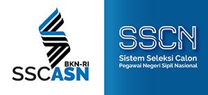 Pengumuman Nilai SKB CPNS Formasi 2019 Kabupaten Pinrang